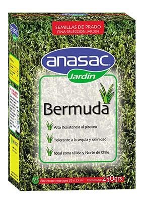 Semillas de pasto bermuda anasac jard n for Zacate de invierno